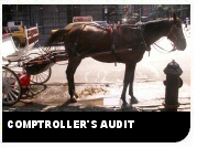 Comptrollers Audit